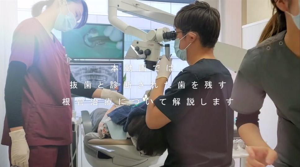 抜歯と診断された歯を治す 根管治療 良い根管治療とは